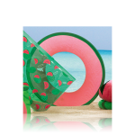 Летающая тарелка «Солнечный арбуз»