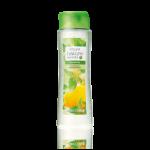 Шампунь для жирных волос «Крапива и лимон». Большой объём
