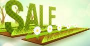 sale_spring